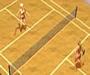 Topless 3D Tennis